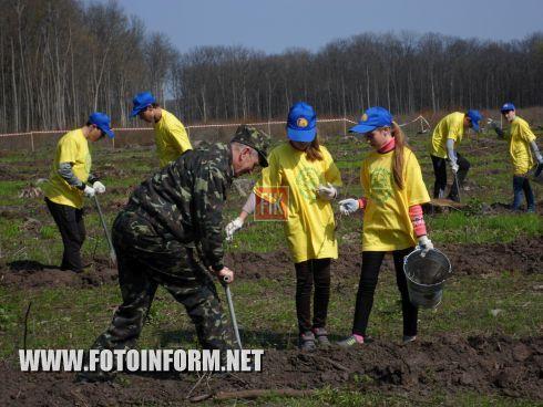 Вчера, 16 апреля, кировоградцы совместным трудом позаботились о будущем Черного леса, Знаменского лесничества, Чернолесского лесхоза.