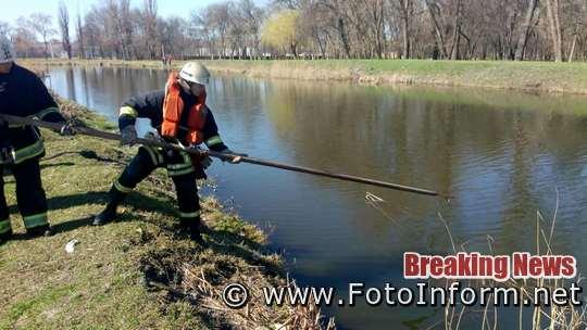 12 березня о 10:40 до Служби порятунку «101» надійшло повідомлення про те, що у річці Березівка м. Олександрія виявлено тіло чоловіка та потрібна допомога по вилученню його на берег.