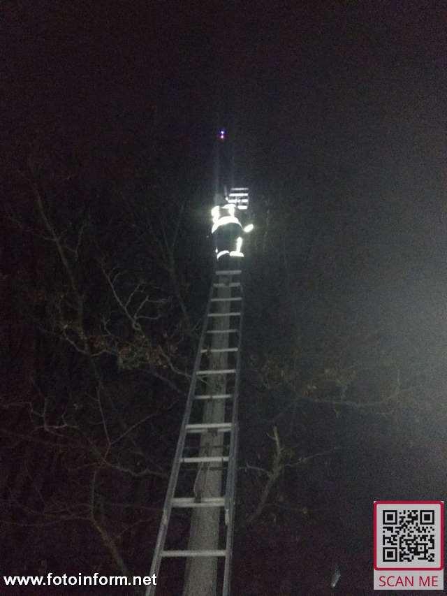 Кропивницький, рятувальники, зняли квадрокоптер з дерева,