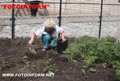 Правоохоронці Кіровоградщини - «За чисте довкілля» (ФОТО)