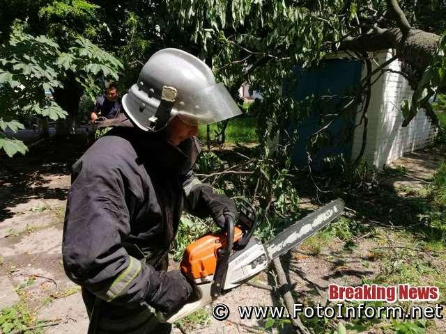 15 червня бійці 1-го Державного пожежно-рятувального загону м. Кропивницький 4 рази залучались для надання допомоги комунальним службам міста по спилюванню та прибиранню аварійних дерев.
