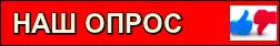 Опрос и голосвание в Кировограде