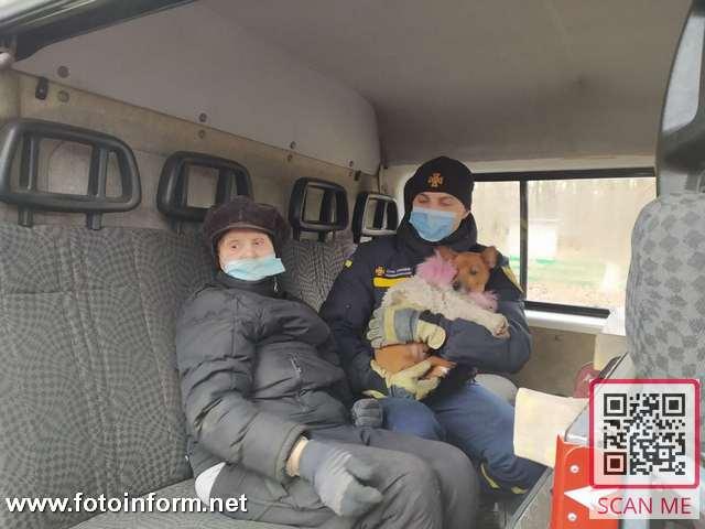 Кіровоградщина, пенсіонерка заблукала в лісі, (ФОТО)